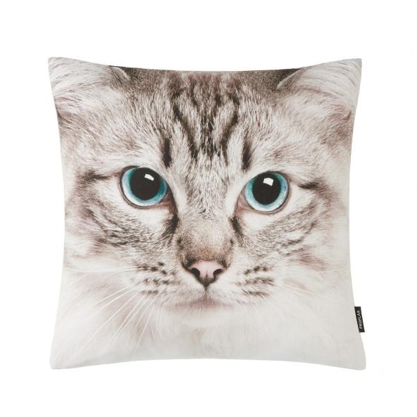 Kissenhülle Cassy, Fotodruck Katze, 100% Baumwolle , Größe 40x40 cm