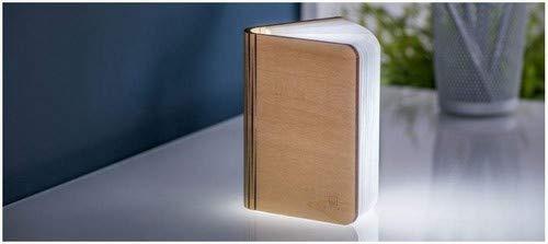 Book light Mini