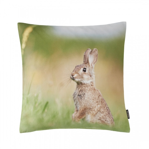 Kissenhülle Flori - Hase, Digital-Fotodruck,Größe 40x40 cm, 100% Baumwolle