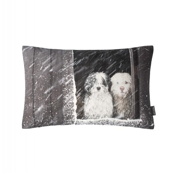 Kissenhülle Twix, Fotodigitaldruck Bobtails im Schneeetrieben, Größe 30x50 cm, Farbe natur