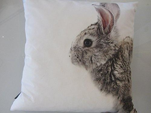 Kissenhülle Jerry 2, Fotodruck Hase, Größe: 40 x 40 cm