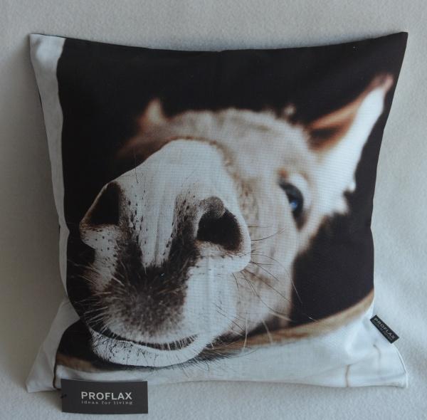 Kissenhülle Rosinante, Digitalfotodruck Esel, 100% Baumwolle, Farbe natur, Größe 40x40 cm